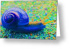 Groovy Snail Greeting Card