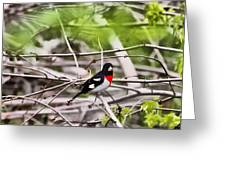Grosbeaks Greeting Card