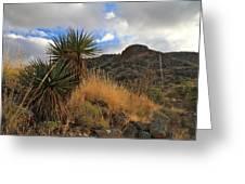 Grosvenor Hill Arizona Greeting Card