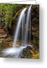 Grotto Falls Great Smoky Mountains Greeting Card by Pierre Leclerc Photography