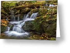 Grotto Falls Great Smoky Mountains Tennessee Greeting Card