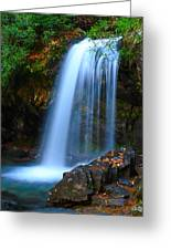 Grotto Falls Greeting Card