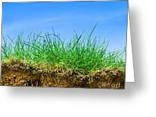 Ground And Grass Greeting Card
