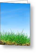 Ground Grass And Sky Greeting Card