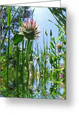 Ground Level Flora Greeting Card