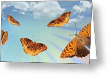 Group Of Butterflies And Sky Greeting Card