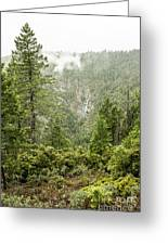 Grouse Falls Greeting Card