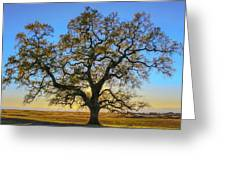 Growing In Life Greeting Card