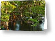 Guadalupe River 2am-115627 Greeting Card
