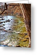 Guadalupe River View Greeting Card