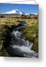 Guallatiri Volcano And Mountain Stream Greeting Card