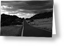 Guanica Dry Forest B W 1 Greeting Card