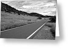 Guanica Dry Forest B W 2 Greeting Card