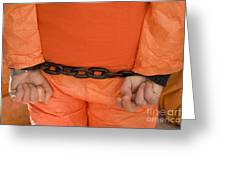 Guantanamo Protest Greeting Card by Jim West