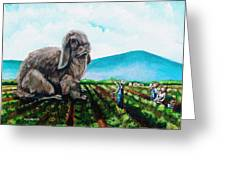 Guard The Carrots Greeting Card
