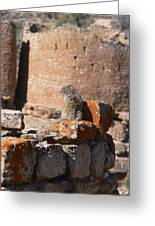 Guardian Of Hovenweep Greeting Card