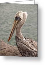 Guardian Pelican Greeting Card