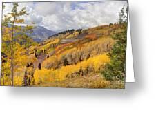 Guardsman Pass Aspen - Big Cottonwood Canyon - Utah Greeting Card