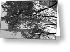 Guggenheim And Trees In Black And White Greeting Card