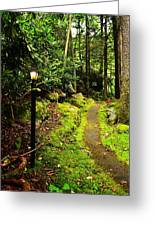 Guide My Path Greeting Card