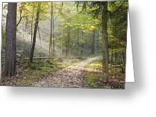 Guided Trail Greeting Card