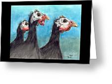 Guinea Hen Rooster Trio Farm Ranch Animal Art Greeting Card