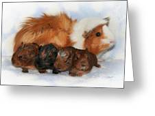 Guinea Pig Family Greeting Card