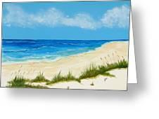 Gulf Coast IIi Greeting Card