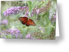 Gulf Fritillary Agraulis Vanillae-featured In Nature Photography-wildlife-newbies-comf Art Groups  Greeting Card