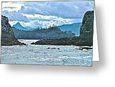 Gull Island Rookeries In Kachemak Bay-alaska Greeting Card