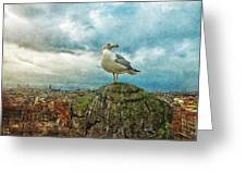 Gull Over Rome Greeting Card