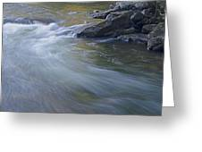 Gull River In Fall Greeting Card