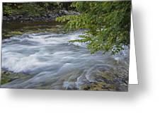 Gull River Rapids Greeting Card