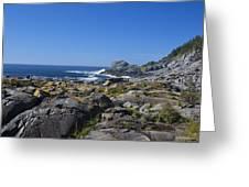 Gull Rock Greeting Card