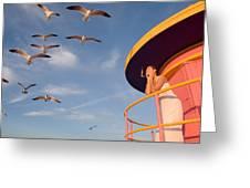 Gull Watching Greeting Card