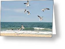 Gulls A Dance'n Greeting Card