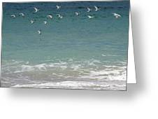 Gulls Flying Over The Ocean Greeting Card