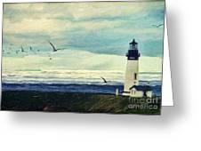 Gulls Way Greeting Card by Lianne Schneider