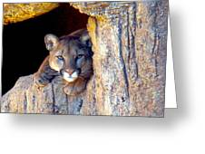 Guardian Of The Cliff Greeting Card