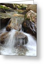 Gushing Water Greeting Card