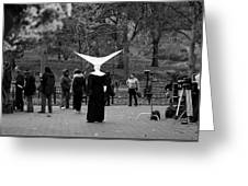Habit In Central Park Greeting Card