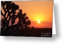 Hacienda Del Sol Greeting Card