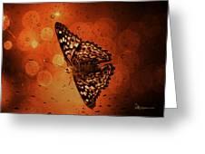 Hackberry Emperor - Asterocampa Celtis Greeting Card