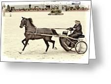 Hackney Pony Cart Greeting Card