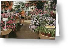 Haefner's Garden Center Impatiens Greeting Card