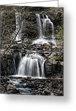 Haines Falls Greeting Card