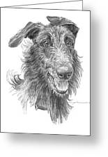 Hairy Handsome Dog Pencil Portrait Greeting Card