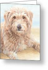 Hairy Sheepdog Watercolor Portrait Greeting Card