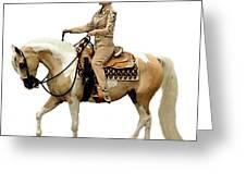 Half Arabian Western Pleasure Greeting Card