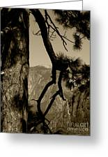 Sierra Nevada Sepia Greeting Card